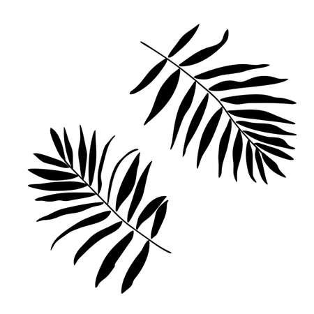 Vector palm leaves silhouette illustration set