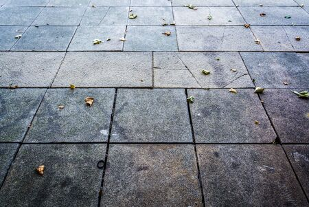 Pavement texture with fallen leaves - abstract background