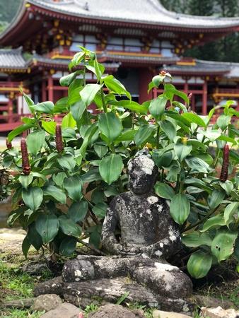 Hidden Buddha statue at Hawaii temple