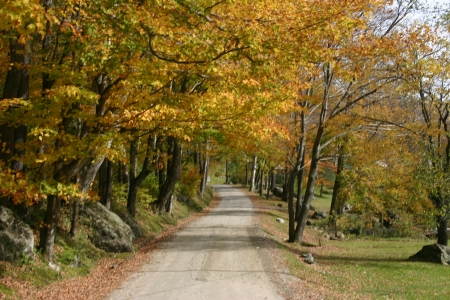 Vermont country road Stock Photo - 7221596