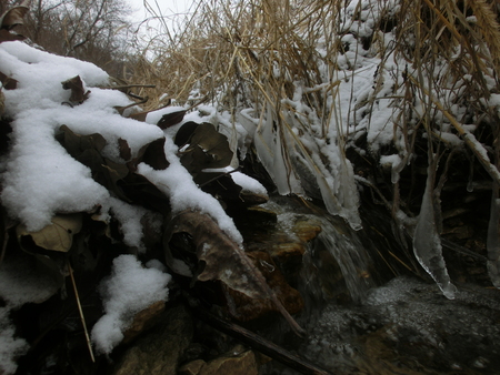 build up: The edge of a small rock ledge in the middle of a little creek with water flowing over top and one side being leaf build up and the other being grasses.