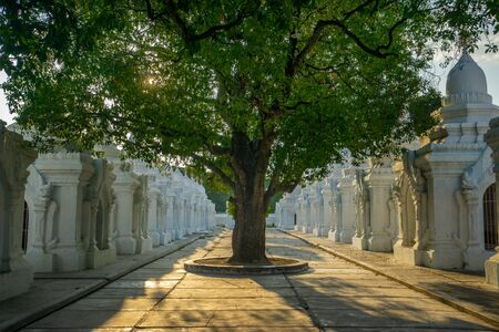 Shady trees and dappled light at dusk at Kuthodaw Pagoda, a Buddhist stupa at the foot of Mandalay Hill that holds the worlds largest book, in Mandalay in Myanmar, formerly known as Burma