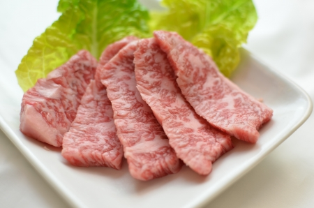 Japanese  beef Stock Photo - 13931741