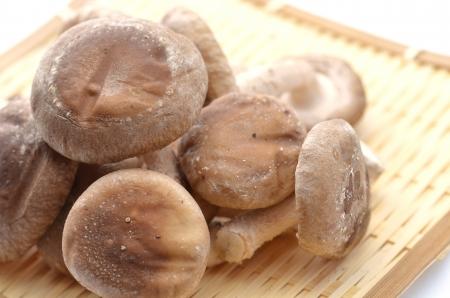 shiitake mushroom Stock Photo - 18240377