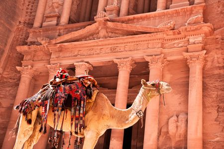 view of the petra treasury with camel in foreground photo