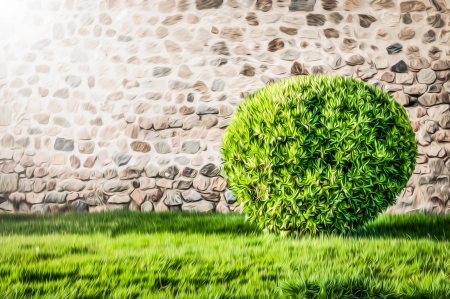 Wall made of big stones in rural style as background  Big bush on the green lawn with trimmed grass  Round shape of plant  Idyllic outdoor scene  Bright summer day  Beautiful modern exterior