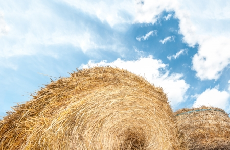 hayrick: Haystack in foreground, blue sky with clouds in background. Roll of dry grass outdoors. Beautiful tranquil nature, bright summer day. Industrial agriculture of crops. Round shape of hayrick.