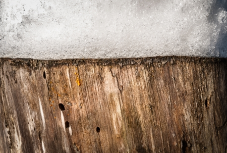 spongy: Close up view of old stump with snow on it. Contrast of two textures: spongy texture of snow and wooden fibres of stump. Nature and ecology. Natural backgrounds and wallpapers.