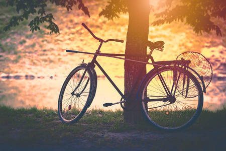 Vintage bicycle by tree at sunset with butterfly net attached. Sun in background, soft look. Belarus, Europe,