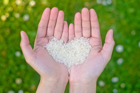 Hands holding rice  photo