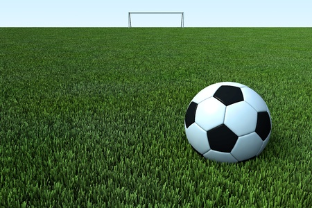 a soccer, a football ball on green grass field