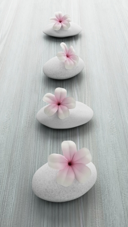 frangipani flower on white stone, zen spa on white wood photo