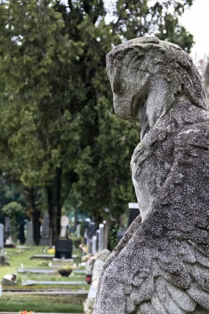 A bird-statue made out of stone on a grave in Viennas central cemetery photo