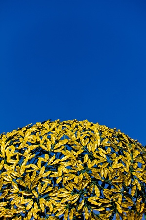 A golden cupola consisting of metal leaves. photo