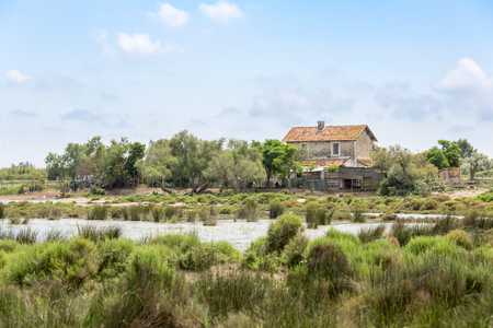A lost and abandoned house in the swamp of Camargue, Provence, France Imagens