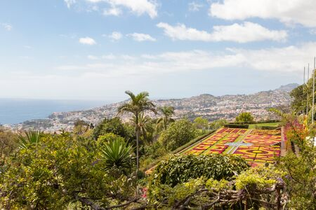 Panorama of the botanical garden on Monte in Funchal on the island Madeira of Portugal Imagens - 127921875