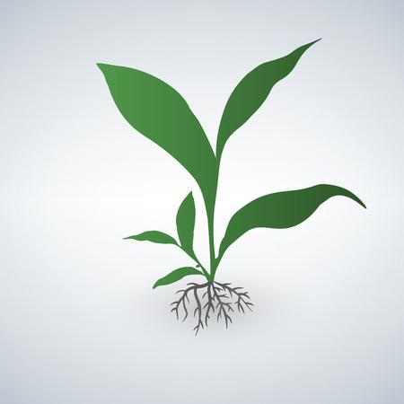 Cute green plant green emblem illustration.