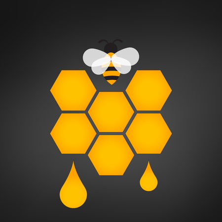 honeycomb with honey drop vector illustration