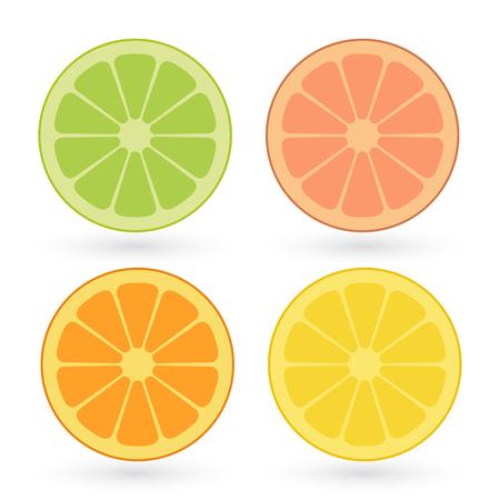 Vektorsatz von Zitronen-, Orangen-, Limetten-, Grapefruitscheiben lokalisiert auf weißem Hintergrund.