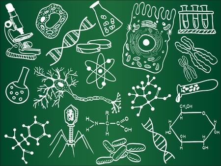 microscopisch: Biologie schetsen op schoolbord Stock Illustratie