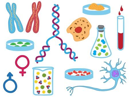 Illustratie van de biologie en de medische iconen - met de hand getekende foto's Vector Illustratie