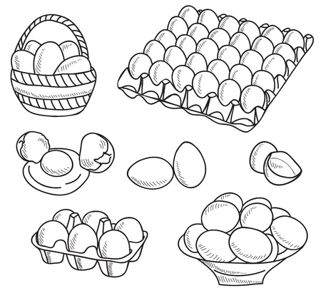 egg yolk: Illustration of eggs - hand drawn picture