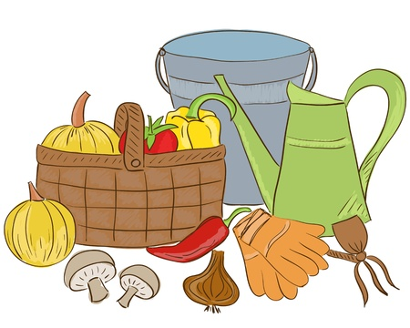 Illustration of garden tools and harvest basket with vegetable - sketch style Vector