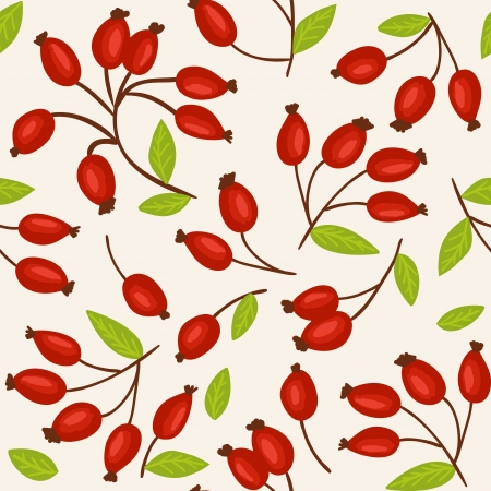 herbal background: Rosehip - natural autumn seamless pattern - christmas background