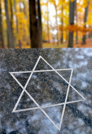 Granite slab with jewish star in autumn forest at cemetery photo
