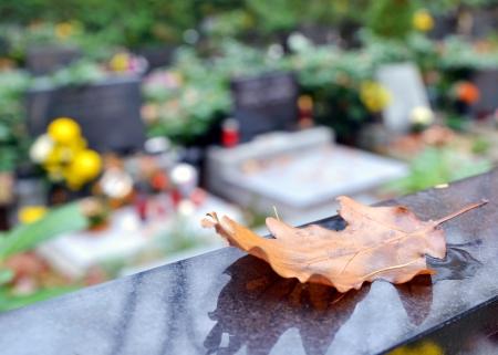 Detail Herbstblatt und Gräber mit Blumen auf dem Friedhof