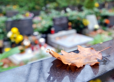 Detail of autumn leaf and tombs with flowers at cemetery