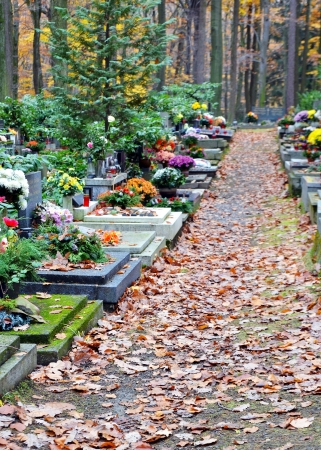 Tombs with flowers and leaves on path at cemetery photo