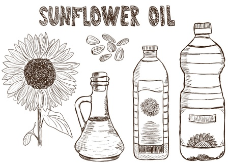 Illustration of sunflower oils and sunflower, doodle style