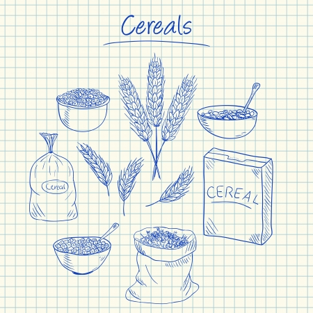 Illustration of cereals ink doodles on squared paper Stock Illustratie