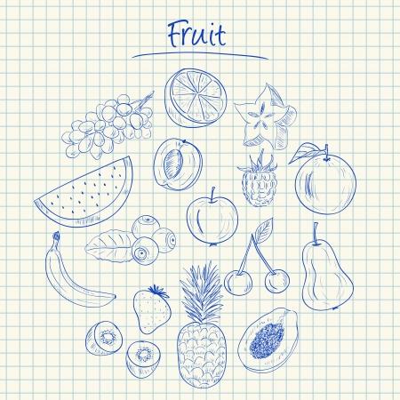 Illustration of fruit ink doodles on squared paper Stock Illustratie