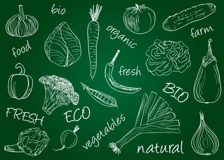 Illustration of vegetables  chalky doodles on school board Stock Illustratie