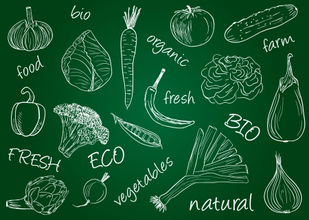 Illustration of vegetables  chalky doodles on school board Vettoriali