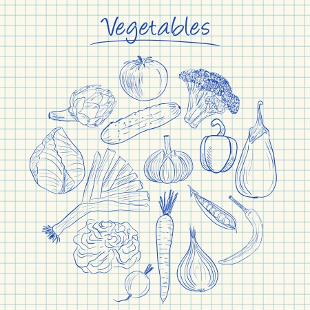 Illustration of vegetables ink doodles on squared paper