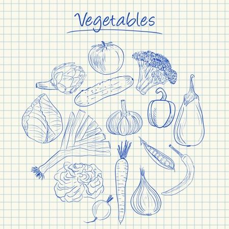 squared paper: Illustration of vegetables ink doodles on squared paper