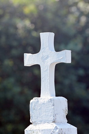 White cross on a cemetery with trees on a background Stock Photo - 21783028