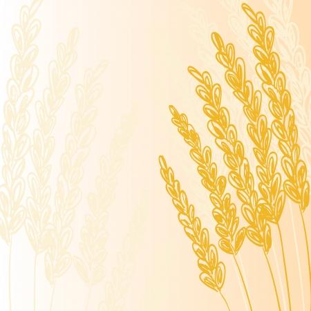 Illustration of golden grain or cereal, background Vector