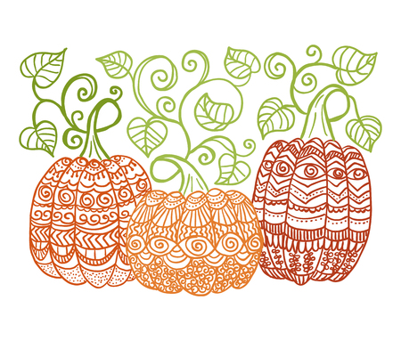 pumkin: hand drawn pumpkins with swirl leaves style Illustration