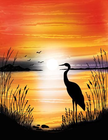 湖の夕日、デジタル水彩画のアオサギ  イラスト・ベクター素材