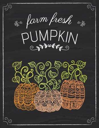 Pumpkins doodle on the black board, colored hand drawn illustration