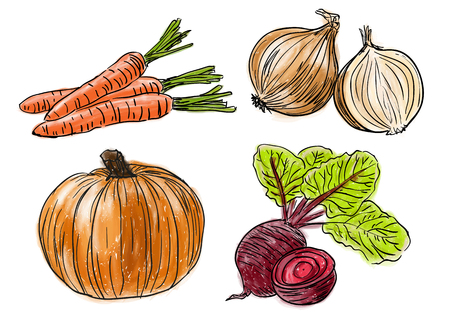 Types of farm fresh healthy vegetables, doodle and painting style 向量圖像