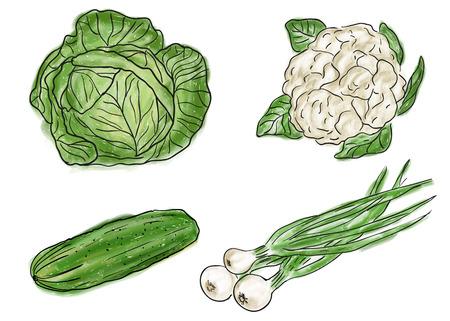 Soorten boerderij verse gezonde groenten, doodle en schilderij stijl Stock Illustratie
