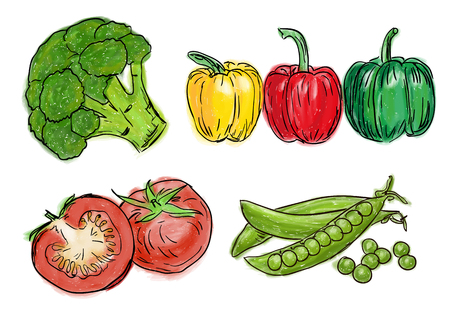 Types of farm fresh healthy vegetables, doodle and painting style Illustration