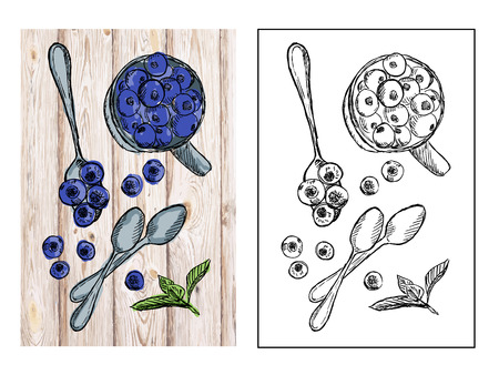 Healthy blueberries on table drawing, top view illustration Zdjęcie Seryjne - 112032644