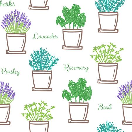 Frest garden herbs in pots seamless pattern, hand drawn Ilustracja