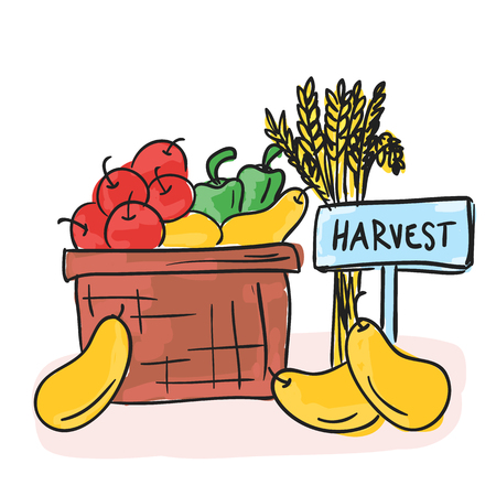 Illustration of Harvest - basket with fruits and vegetables, doodle style Illustration